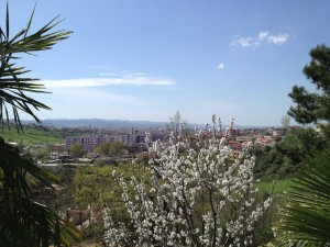 Spring-at-the-School-of-Byzantine-Music-located-on-the-foothills-on-the-edge-of-Tirana
